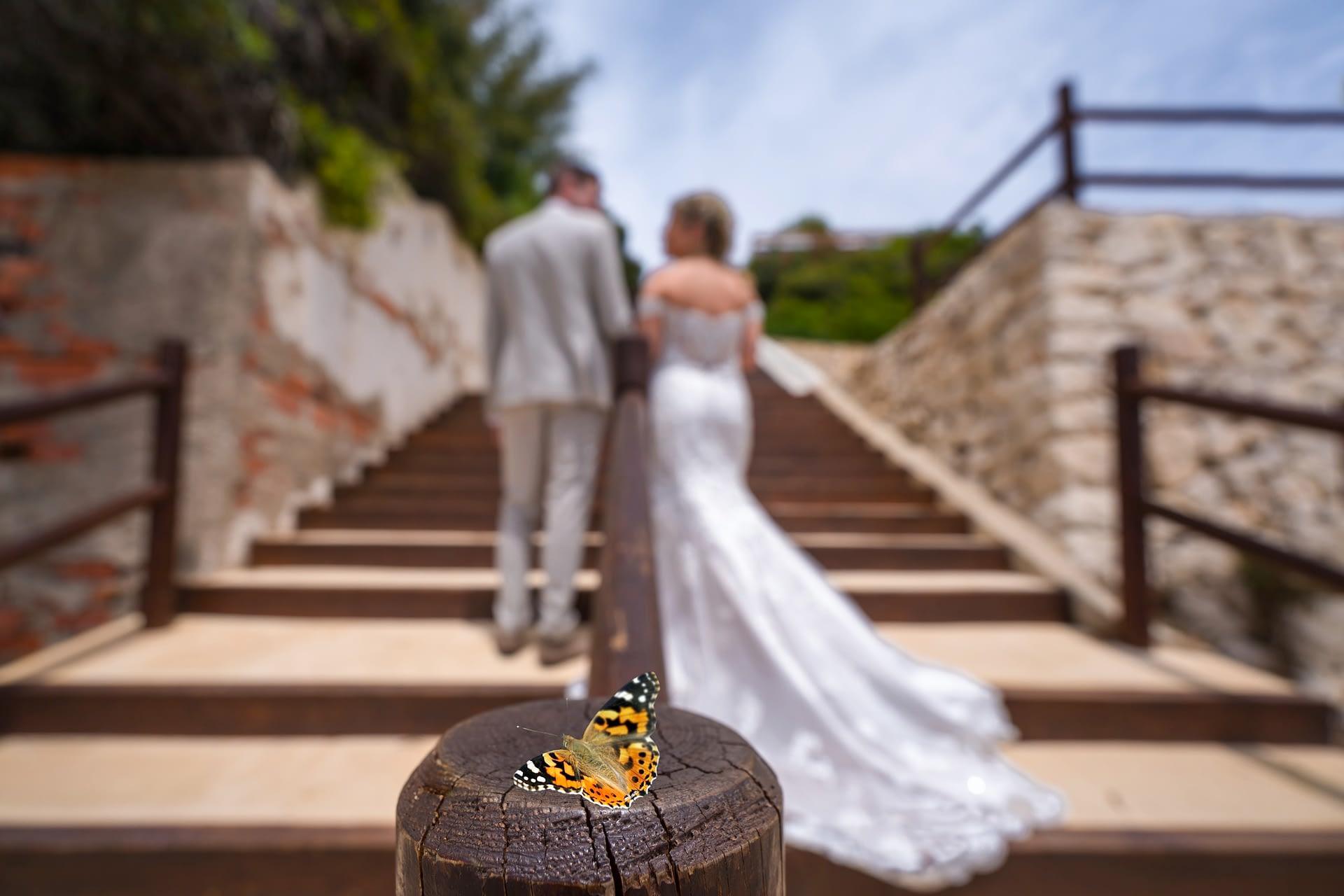 Pierluigi Cavarra - fotografo de bodas y eventos - wedding photographer costa blanca - ejemplo -35